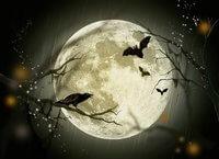 Luna arcano mayor tarot